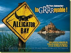 alligator bay